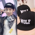 EXO Baseball Cap - WOLF Cap - 3 Color ( RED /BLACK / WHITE )
